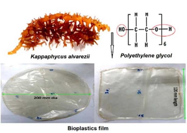 биопластиковая пленка